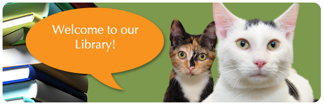 Veterinary Care in Los Angeles - LAX