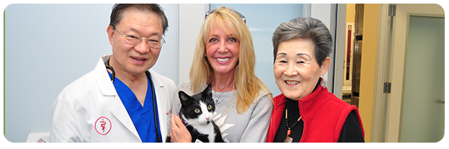 Westchester Veterinary Center and Cat Clinic in located near Los Angeles International Airport