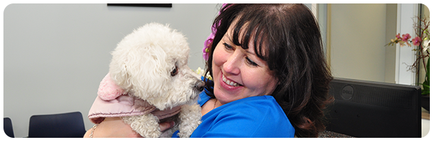 Contact Westchester Veterinary Center and Cat Clinic